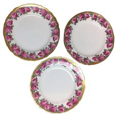 Three Tuscan Rose fine English bone china luncheon plates