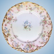 Eight matching Hutschenreuther 9 inch dinner plates