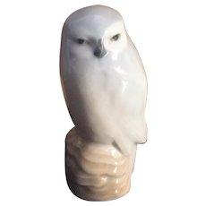 Royal Copenhagen Owl  1741