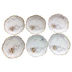 Six vintage L S & S Limoges plates 6 inch