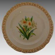 English Porcelain Botanical Plate early 19th Century