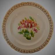 English Porcelain Botanical Plate early 19th Century