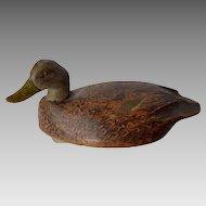 Black Duck Decoy - Walter Snow ca. 1950s
