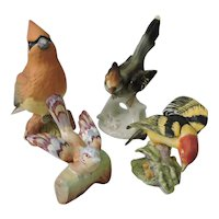 Instant Collection of Porcelain Birds - Beswick, Staffordshire, Worcester and Dresden