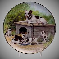 """1900's Bull Dog w/ her (6) Puppies  9 1/2"""" Portrait Plate by Taylor, Smith & Taylor"""