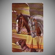 Early 1900's Postcard of two Horses in Stall along with a Dog