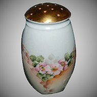 1890's Hand Painted Artist Signed Bavarian Porcelain Sugar Shaker