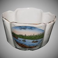 1900's German Porcelain Dish Souvenir of Willamette Falls, Oregon
