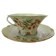 Rosenthal Antique Hand Painted Porcelain Cup and Saucer c 1891