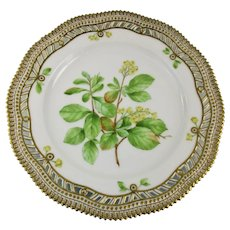 Rare c-1900 Flora Danica Reticulated 9'' Luncheon Plate by Royal Copenhagen - Berberis vulgaris.L
