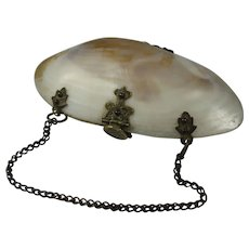 Antique Shell and Eel Skin Coin Purse