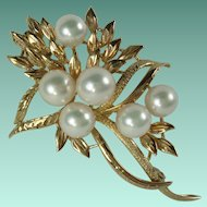 Vintage 14 Karat Yellow Gold 6 Cultured Pearls Brooch