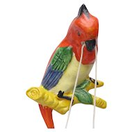 Parrot Bird Hanging Basket Wall Pocket