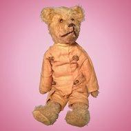Rare Early American Rough Rider Teddy