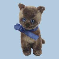 Steiff Siamy cat 11cm 1953-54