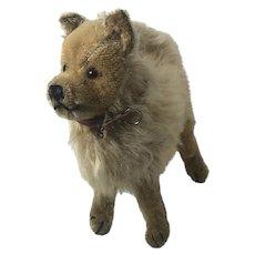 Antique Steiff Wolfspitz dog 1930s