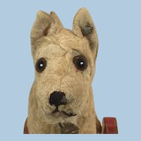Steiff Sealyham dog on eccentric wheels 1939-1943