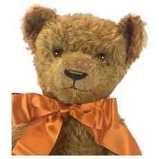 American Ideal Teddy Bear 1920s