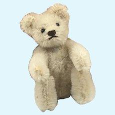 White 3.5 inch Steiff Teddy Bear 1950s