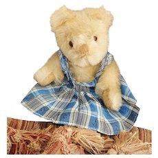 Adorable 8 inch Farnell Twyford Teddy Bear