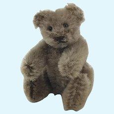 Steiff Teddy Bear 3.5 inches tall