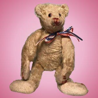 Antique American  Hecla Teddy bear