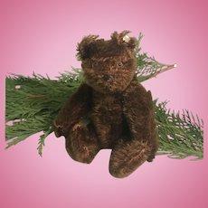 Steiff Teddy Bear Chocolate US Zone