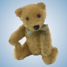 Steiff Original Teddy bear 1950s