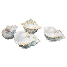 Royal Bayreuth Spiky Shell Lusterware - 4 Pieces - c. 1900