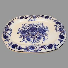 T. Rathbone and Co. Crysanthemum Pattern English Server - 1889-1923