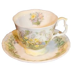 Royal Doulton Brambly Hedge Spring Cup and Saucer
