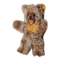 Steiff Zotty Bear 1976-1982 0305/32 12 inches