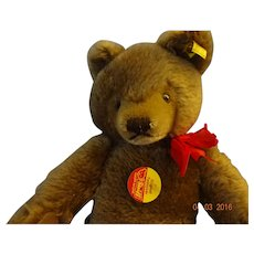 Steiff  Brown Bear