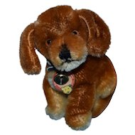Sweet Steiff US Zone Bazi with Angular Bear Head Chest Tag