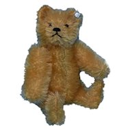 Cute Steiff Gold Mohair Teddy , 5 Inches, FF Button
