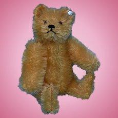 Cute Steiff Gold Mohair Teddy , 5 Inches, FF Button