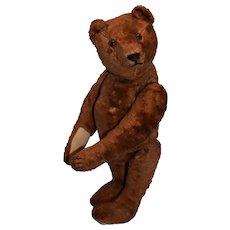 Unusual Brown Steiff Silk Plush Teddy , FF Button
