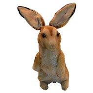 Huge Steiff Begging Rabbit, 1950s, RSB