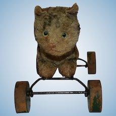 Sweet Steiff Silk Plush Cat on Wheels