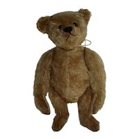 "Fabulous 16"" steiff Teddy, FF Button, 1909"