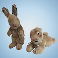 Two Vintage Steiff Bunny Rabbits with Raised Script Buttons