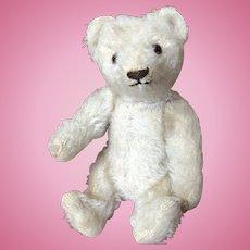 "Older White Mohair Steiff 6"" Teddy Bear in Excellent Condition"