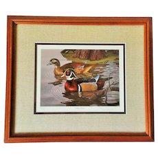 Randy McGovern Signed & Framed Wood Ducks Print