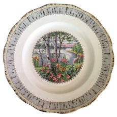 Royal Albert Silver Birch Dinner Plate