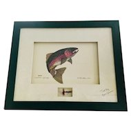 Rainbow Trout Framed Print with Fly tied by Ken Grimes