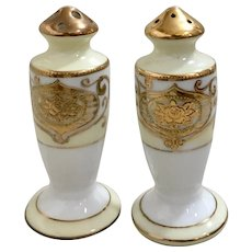 Noritake Vintage Salt and Pepper Shakers Pattern 175