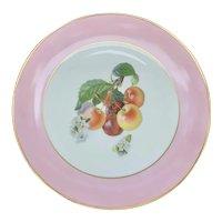 Tirschenreuth Pattern 271 Apple Blossom Plate