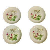 Shafford Herbs & Spices Bread Plate Set