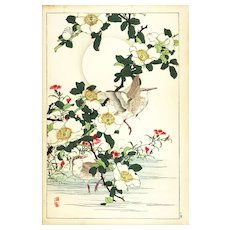 19th Century,original,Antique,Japanese,Hand colored,woodblock Print From KONO Bairei,Spring Summer Issue 1890,Brids,Flowers,Rare