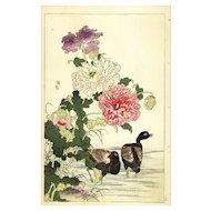 19th Century,original,Antique,Japanese,Hand colored,woodblock Print From KONO Bairei,Spring Summer Issue 1890,Brids,Flowers,Rare,ducks
